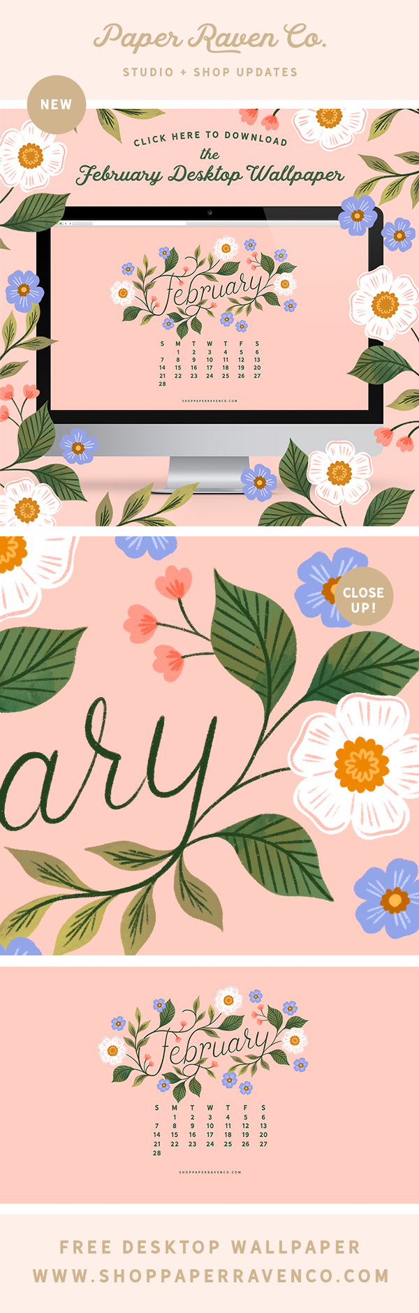 February 2021 Illustrated Desktop Wallpaper by Paper Raven Co. #dressyourtech #desktopwallpaper #computerbackground