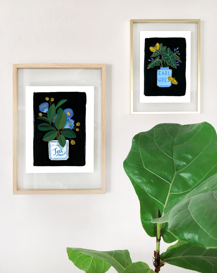 Plant Series 001: The Rubber Plant Fine Art Print