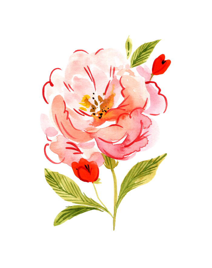 Mood Series 001: The Peony Fine Art Print