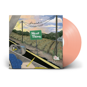 Frankie Cosmos 'Next Thing'
