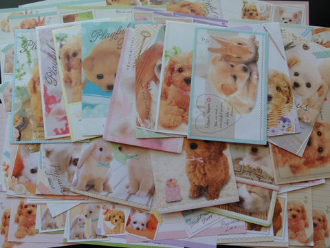 Dog / Puppies Letter Paper + Envelope Theme Set