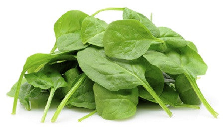 Baby Spinach Organic