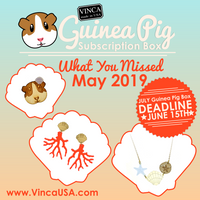 May 2019 Guinea Pig Subscription Box