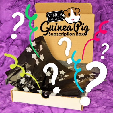 The Guinea Pig Subscription Box is Here!