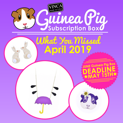 April 2019 Guinea Pig Subscription Box