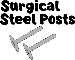 surgical steel posts
