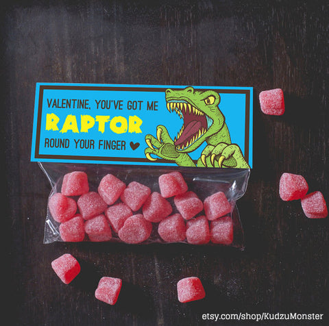 raptor dinosaur valentine for boys