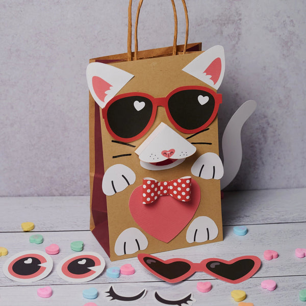 Cool Cat Valentine Box Decor Kit