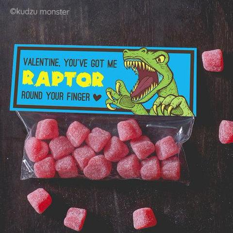 Raptor Valentine Treat Topper