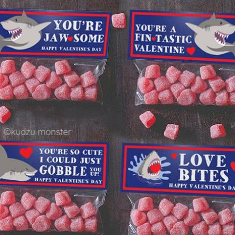 Shark Valentine Treat Topper Combo Pack