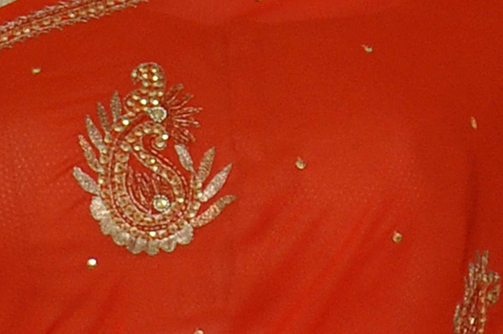 Coral Embroidered Pure Georgette Saree