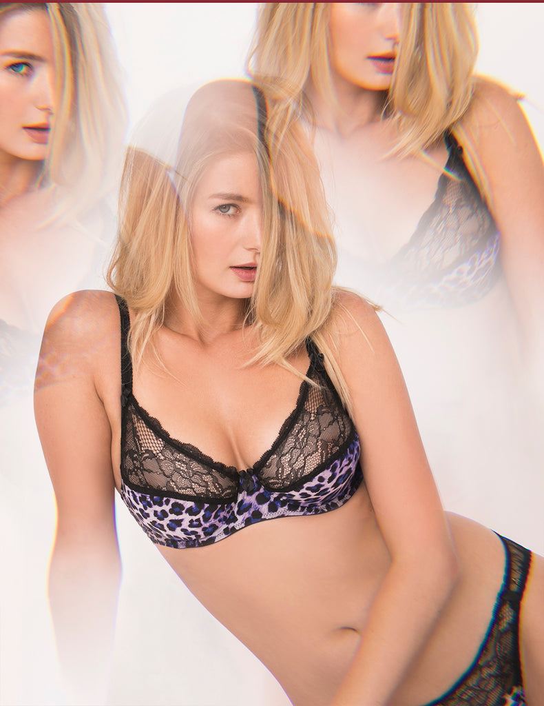 Purple Leopard Brief Knickers | Mimi Holliday Sexy Lingerie