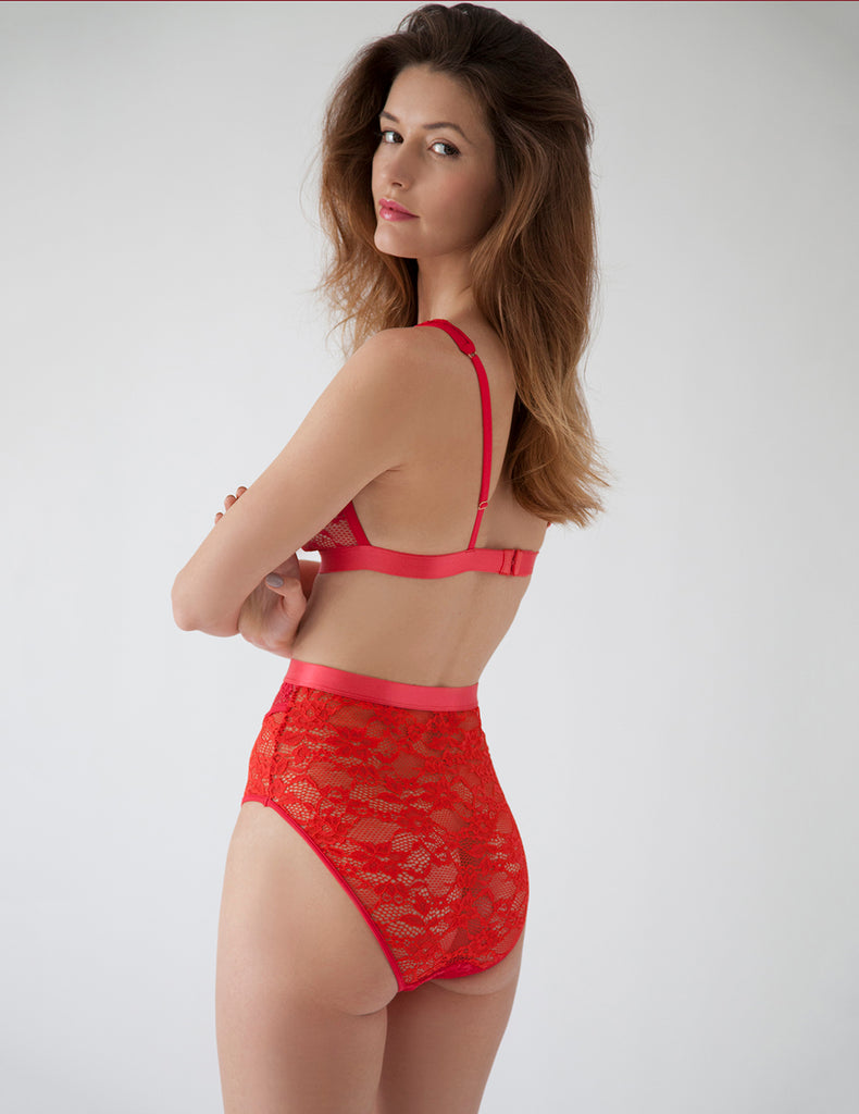 Scarlet Whisk High-Waisted Knickers