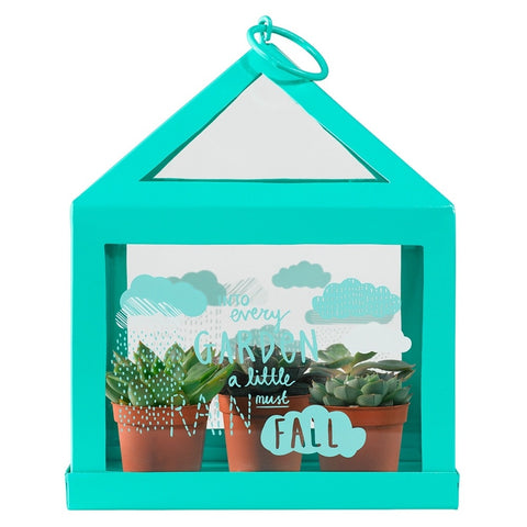 Thoughtful Gardener Mini Green House | Wild & Wolf -  Bloomsbury Store - 1