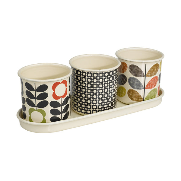 Orla Kiely Herb Pots | Wild and Wolf -  Bloomsbury Store - 1