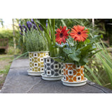 Orla Kiely Herb Pots | Wild and Wolf -  Bloomsbury Store - 4