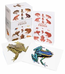 Box of Frogs: 100 Postcards -  Bloomsbury Store