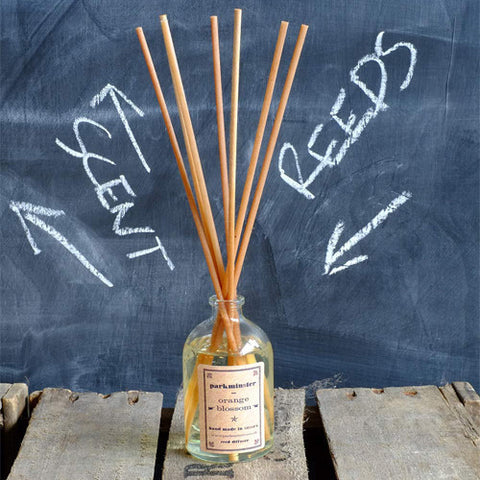 Reed Diffuser | Parkminster -  Bloomsbury Store - 1