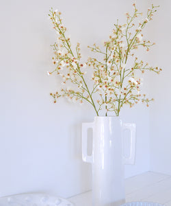 white oncidium stem