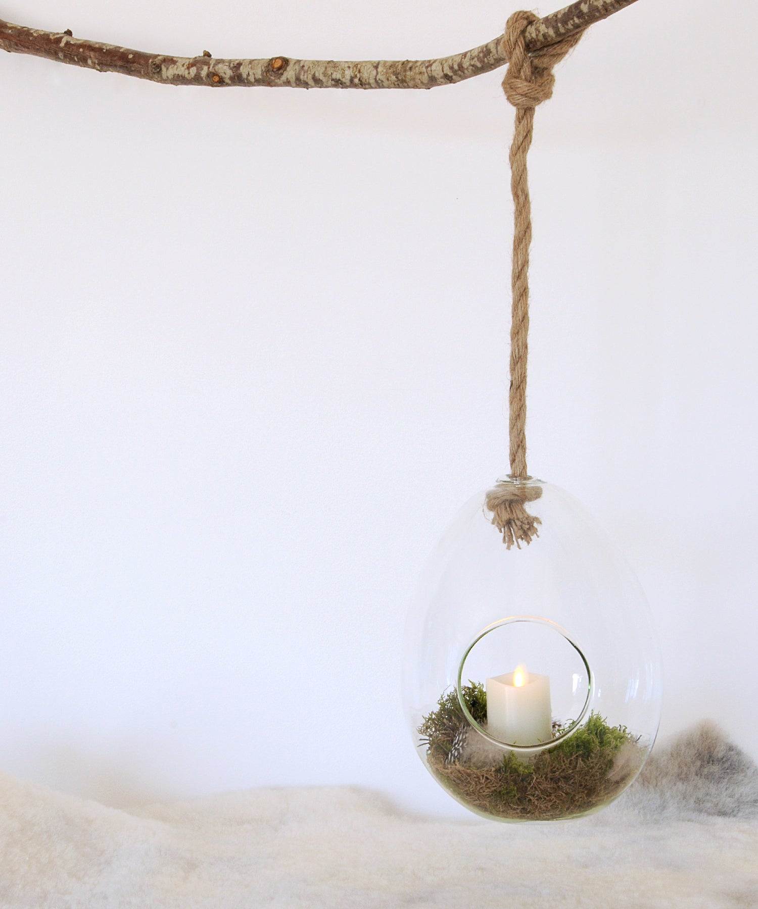 glass egg terrarium