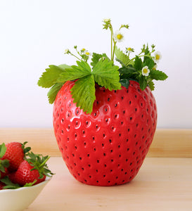 Large Strawberry Vase