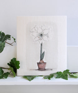 Amaryllis Dishcloth