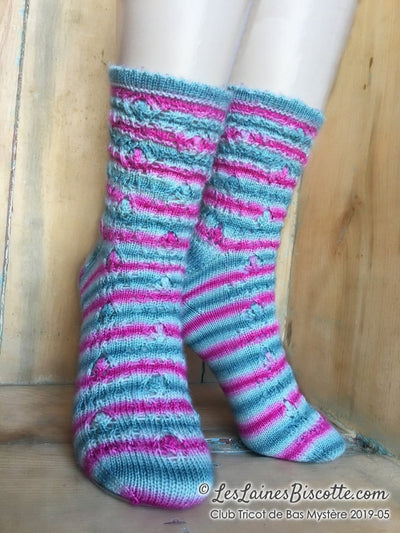 The Mystery Sock Knitting Club | Bimonthly Subscription