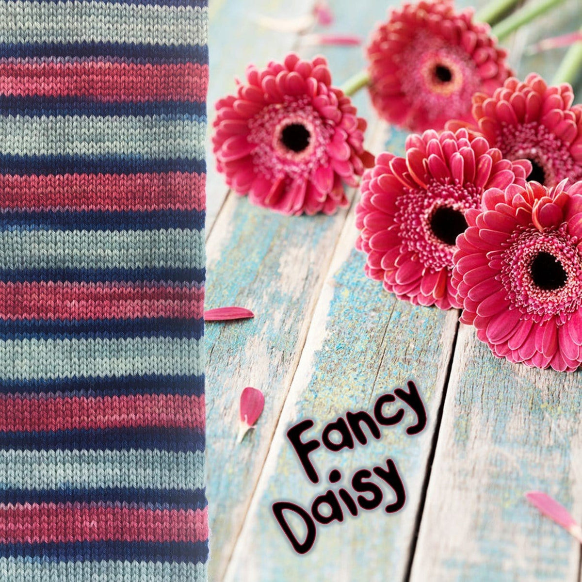 Bis-Sock Fancy Daisy