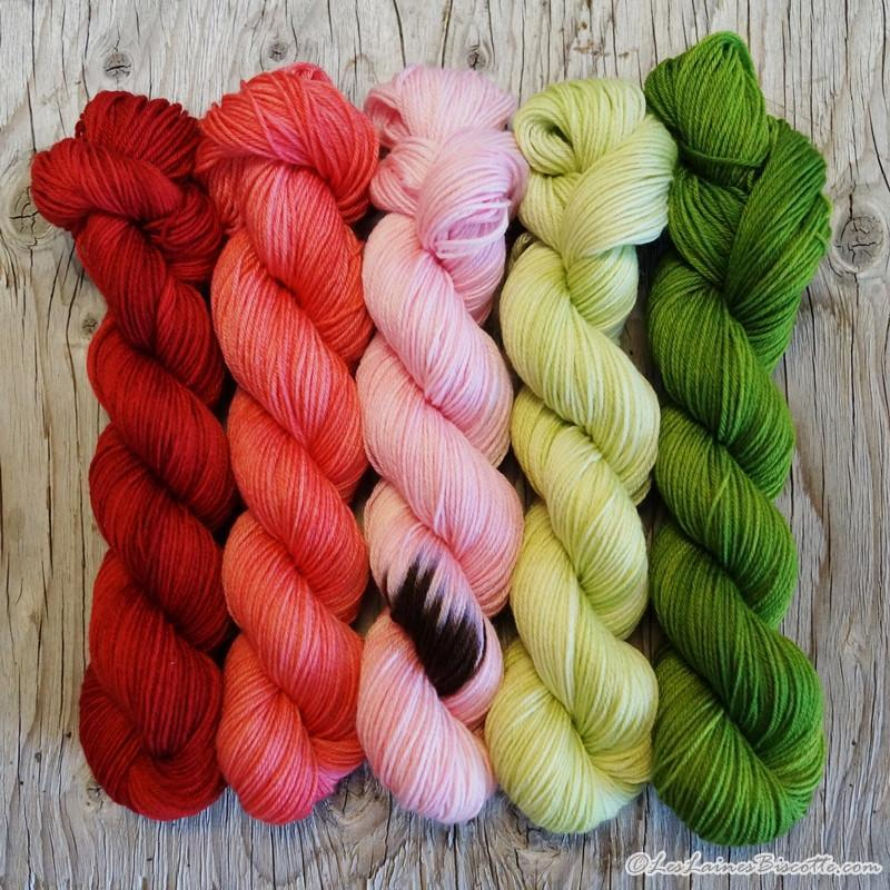 Kit de tricot laine Paintbox couleur Melon d'eau