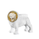 Snow Globe Space Dog By Donkey Products