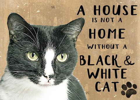 Black and White Moggies Cat Metal Sign