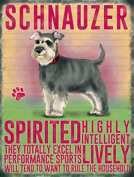 Schnauzer dog metal art sign b y backstage originals . cats and dogs