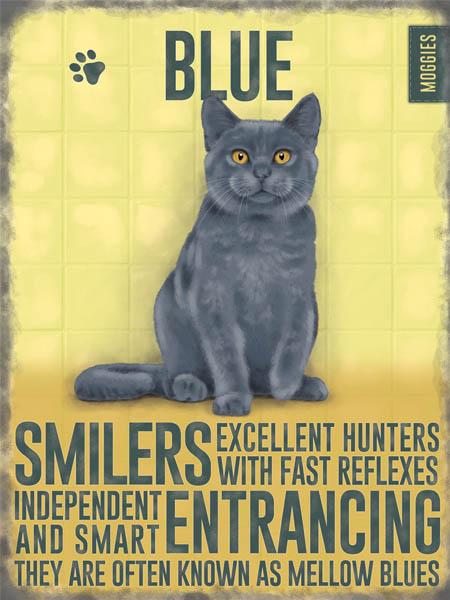 Blue cat metal art sign by backstage originals. cats and dogs