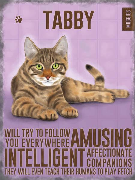 Tabby Moggie Cat Metal Sign