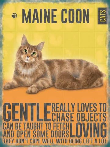 Maine Coon Cat Metal Sign