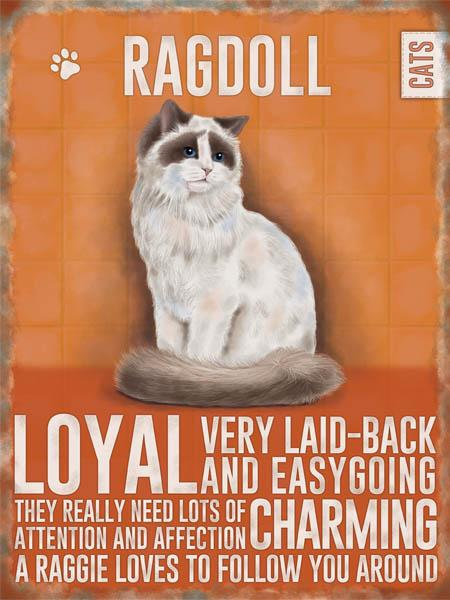 Ragdoll Cat Metal Sign