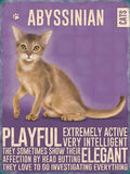 Abyssinian Cat Metal Sign