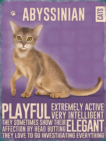 Abyssinian Cat METAL SIGN from backstage originals