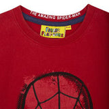 Kid's Spider-Man Face Vintage Wash T-Shirt