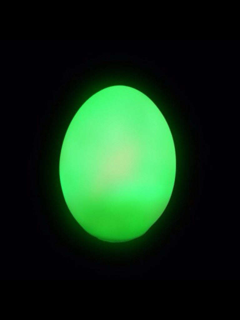 COLOUR CHANGING EGG - Pheebsters Sensory Toys - Autism Toys, Special Needs Chews & Fidget Toys - ASD ADHD TOYS UK