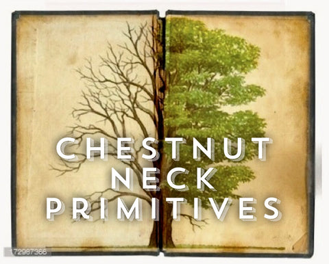 Chestnut Neck Primitives