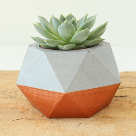 cement planter geometric