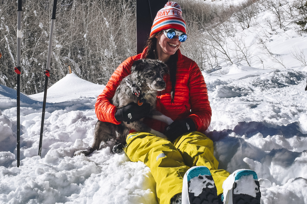 How to ski with your dog in the backcountry
