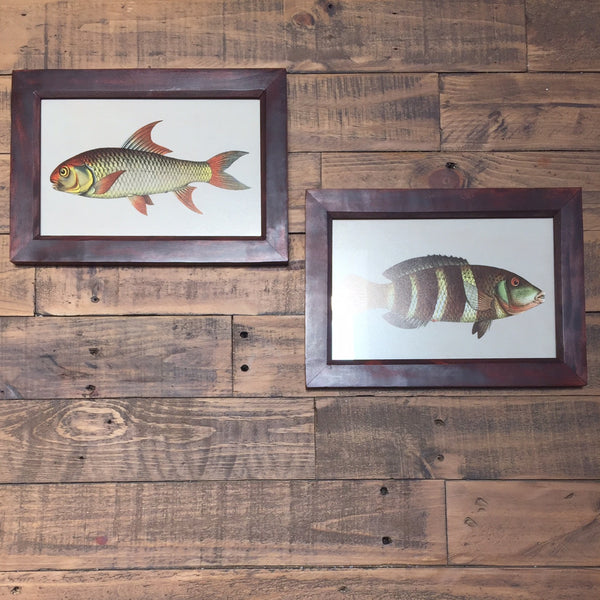PAIR OF FISH PRINTS