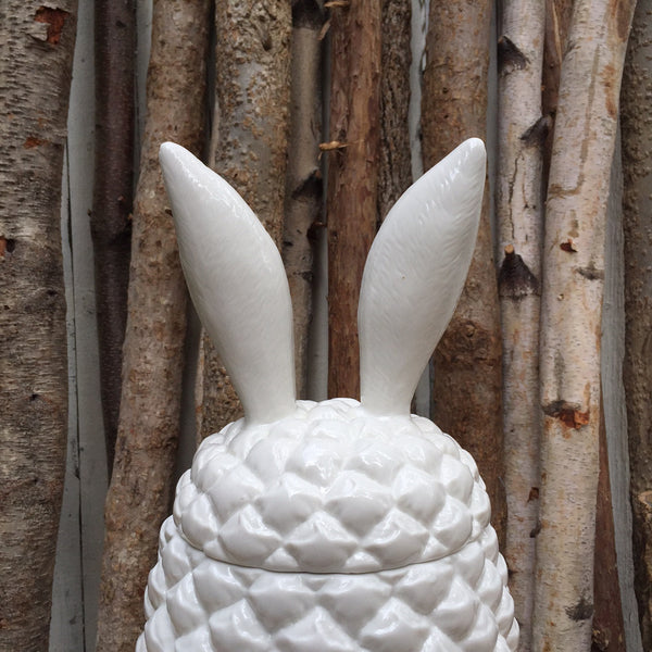 PINEAPPLE BUNNY CONTAINER