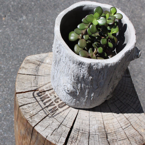 BARK PLANTER  TALL