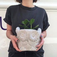 OWL PLANTER   WHITE