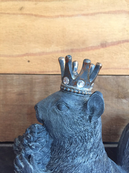 KING SQUIRREL