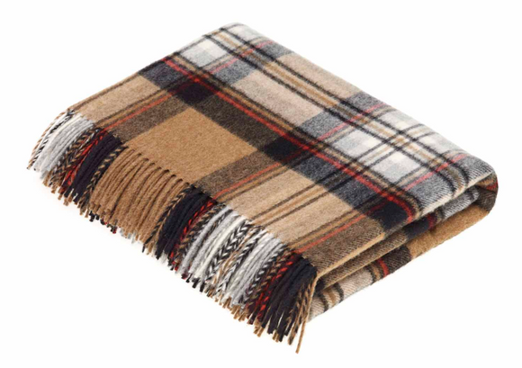 Camel Stewart Lambswool Throw