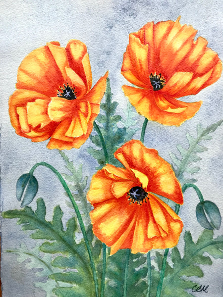Poppies 2 - 11 x 14 print by Cathie Hamilton - Martello Alley